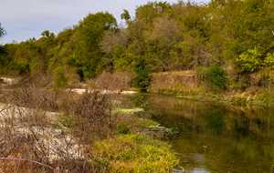 Mid and Lower Cibolo Creek Virtual Stakeholder Meeting